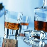 Набор стаканов для виски 225 мл, 6 штук, серия Tossa, 101 271-6, SCHOTT ZWIESEL, Германия